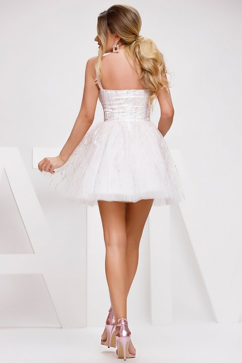 Princess dress in white tulle with cream-colored embroidery.